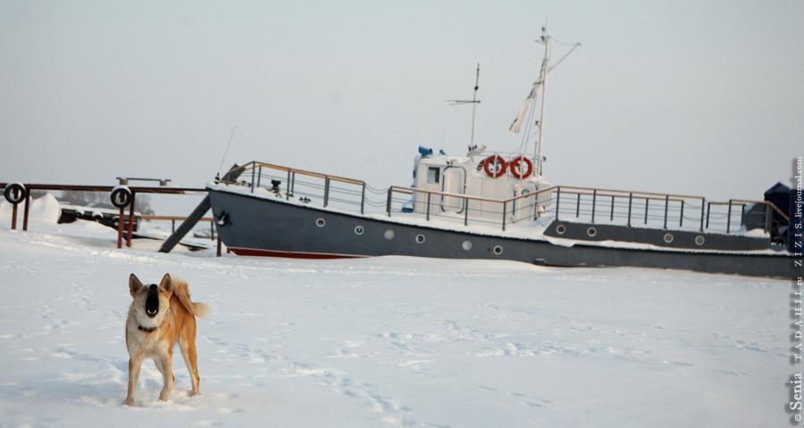 На зиму лодки встают на п