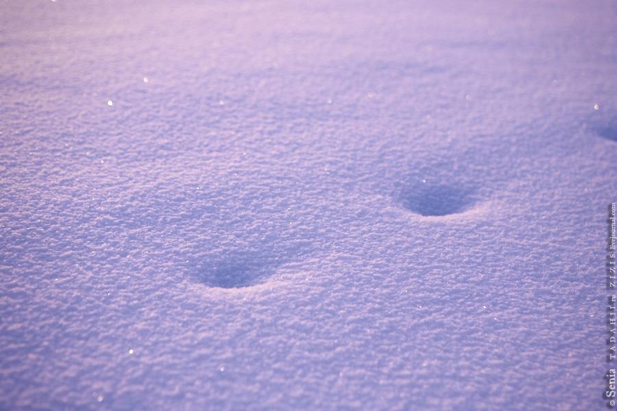 Снег сказочный. Фото не п