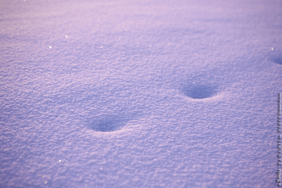Снег сказочный. Фото не получилось :)