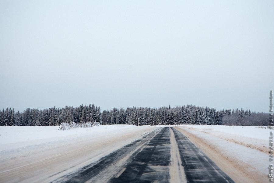 Дорога из Пермского края
