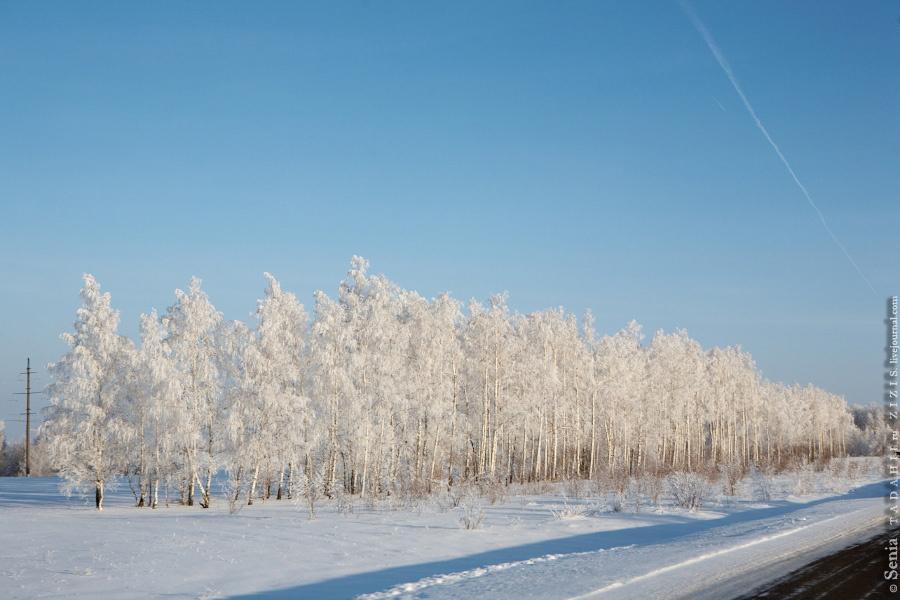 Это дорога в Татарстане. Тоже очень красиво. Мы тут были летом, зимой все выглядит по другому.