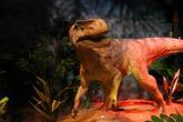 В павильоне с «динозаврами»