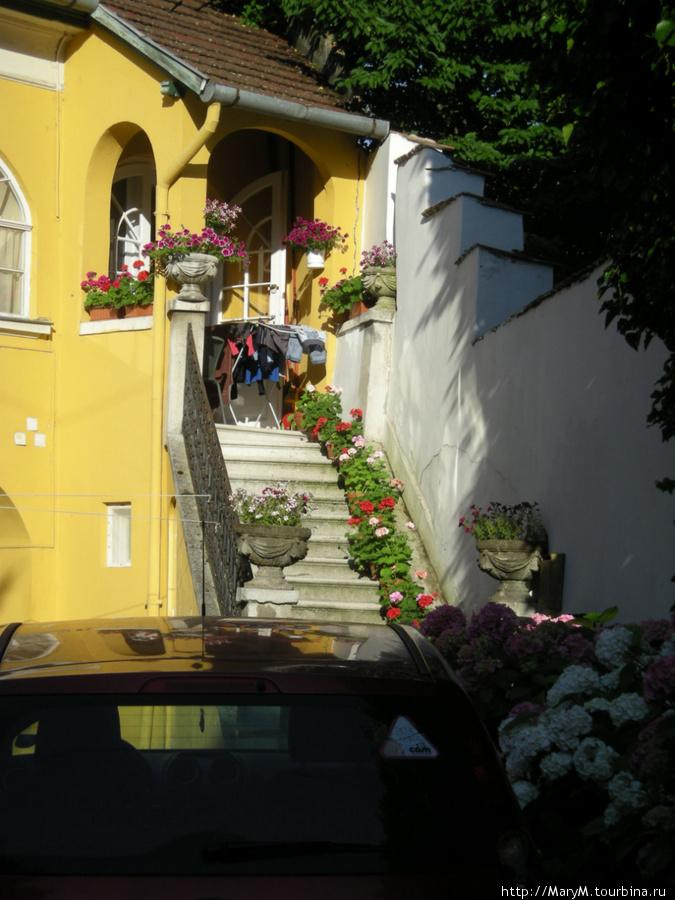 Вход в любой дом в Эгере просто не может не быть в цветах.