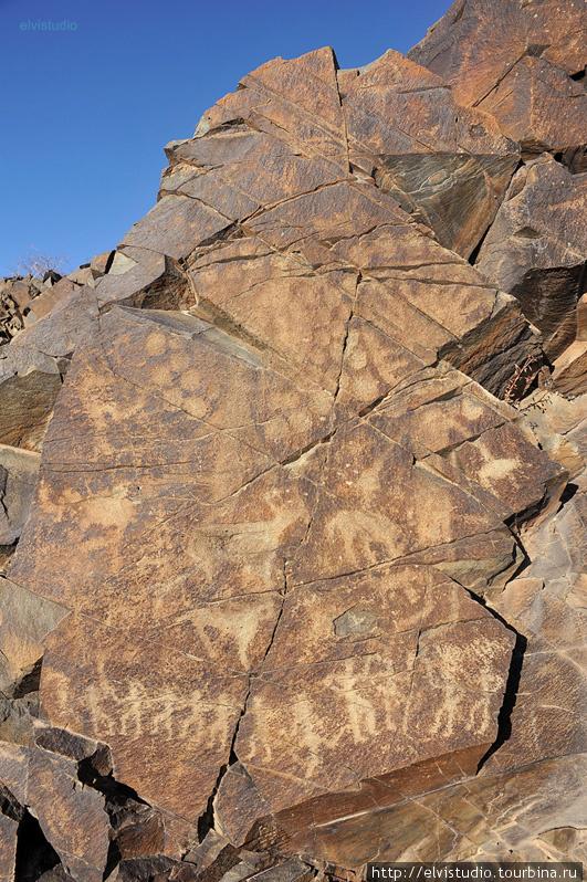 Божества солнца на рисунках времен бронзового века. Тамгалы — объект мирового культурного и исторического наследия ЮНЕСКО.