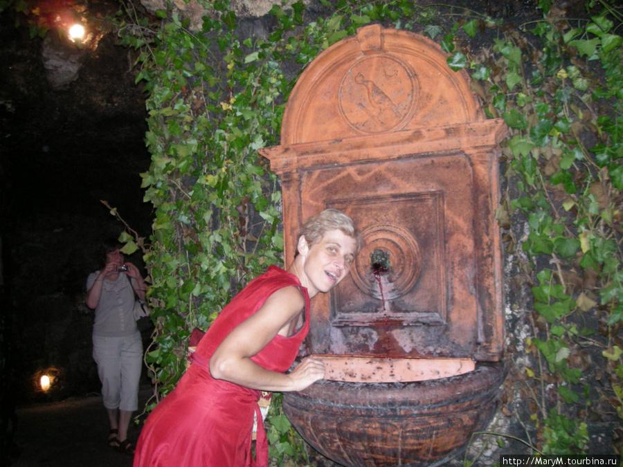 Винный фонтанчик в Лабиринте.