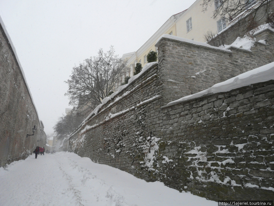 Крепостные стены Таллинна