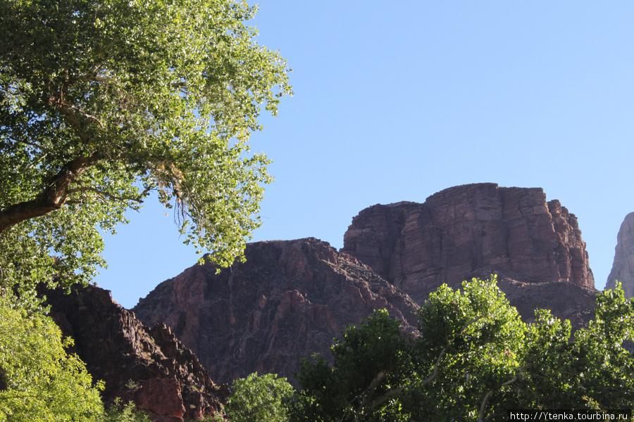 вид со дна каньона.