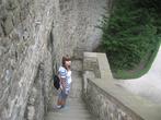 Лестница около замковой стены