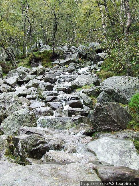 Вода по камням стекала ручьями...