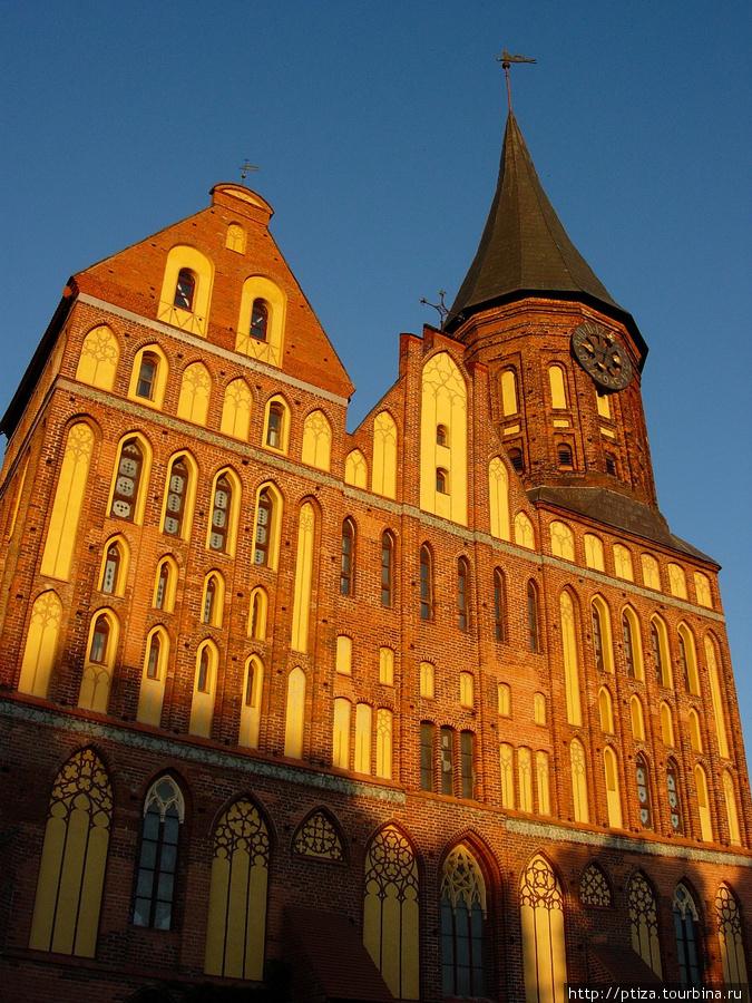 Кафедральный собор — глав