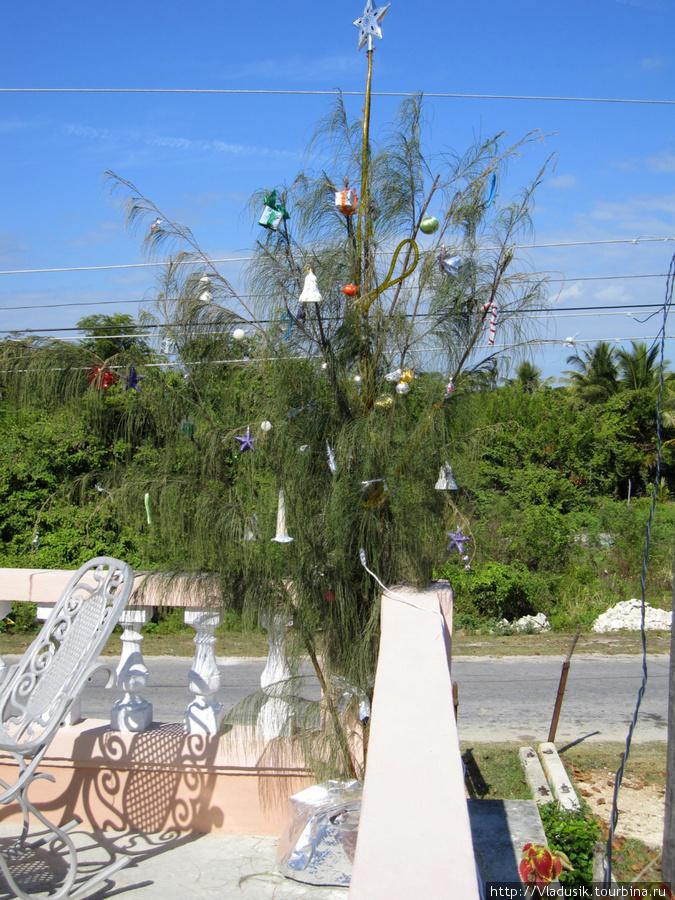 елка на крыше