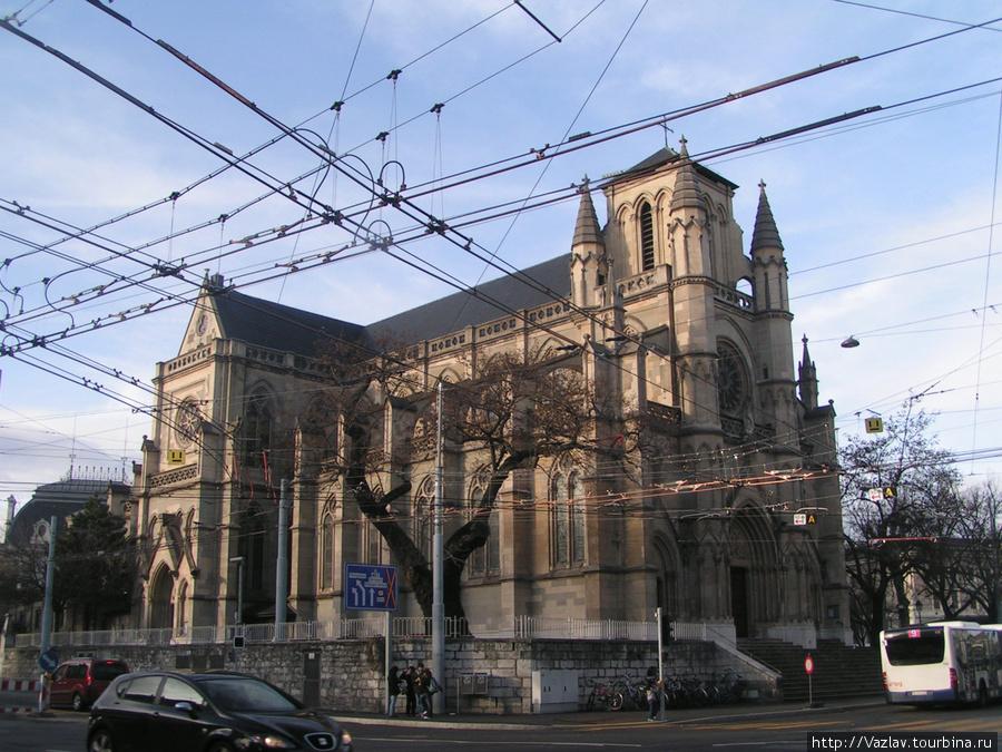 Боковой вид на базилику