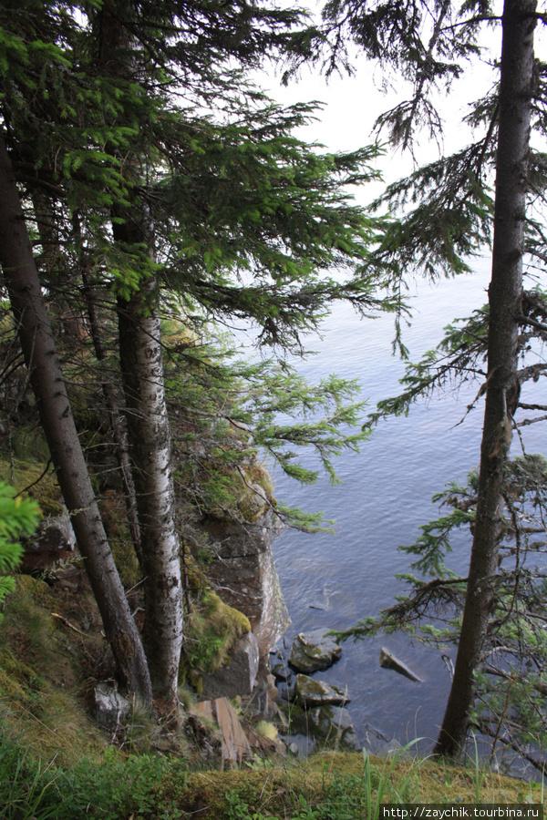 Озеро, вид сверху.