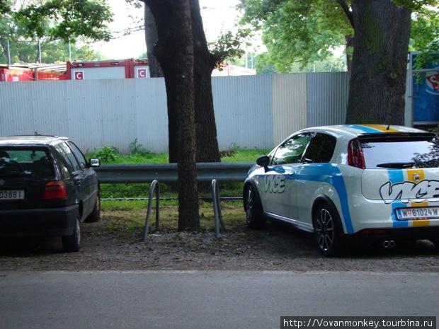 Забота/Защита деревьев от машин