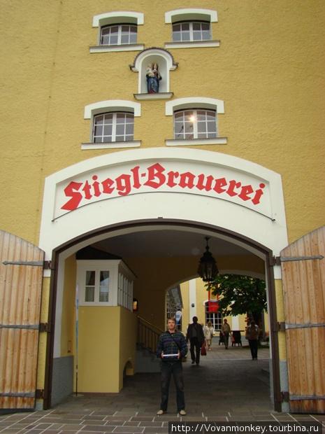 Пивоварня Штигль