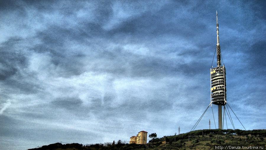 фотографию снял Joan Campderrós-i-Canas  http://www.flickr.com/people/joanet/