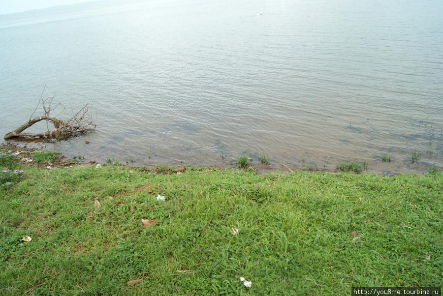 берег озера Виктория