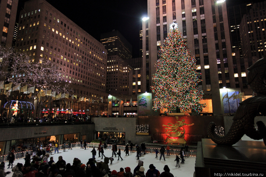 главная новогодняя елка Нью-Йорка у Рокфеллер центра