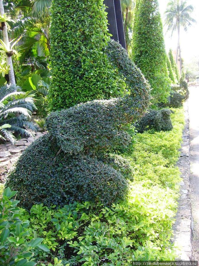 Тайцы очень любят фигуры из растений.