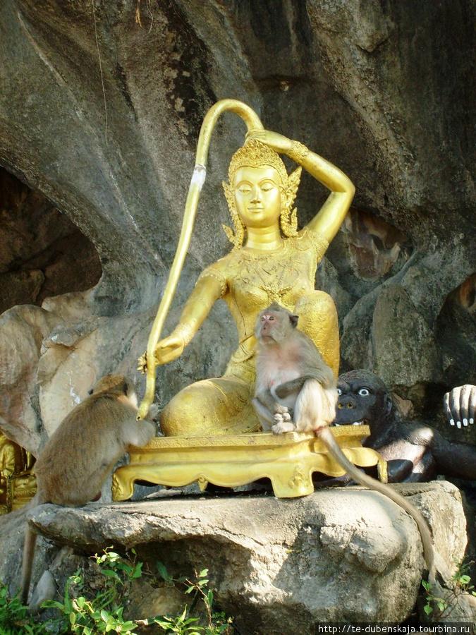 Обезьяны и Будда.