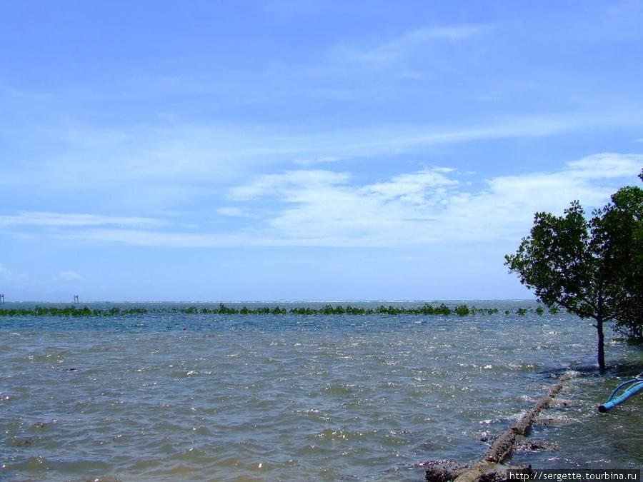 Море Сулу. Местные говорят Оушен(океан)