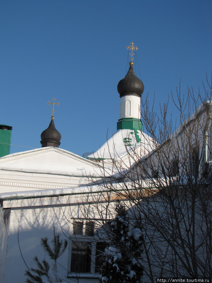 Купола Сергиевской церкви.