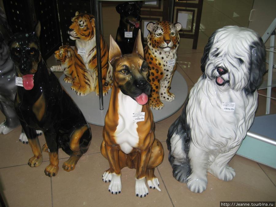 Собачки в магазине