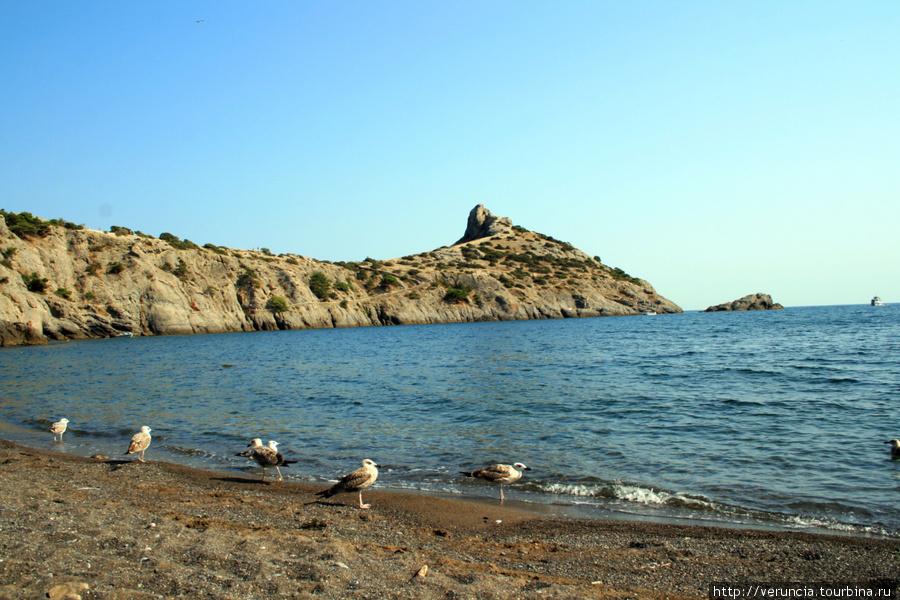 Царский пляж.