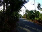 Дорожка в Тагбурос