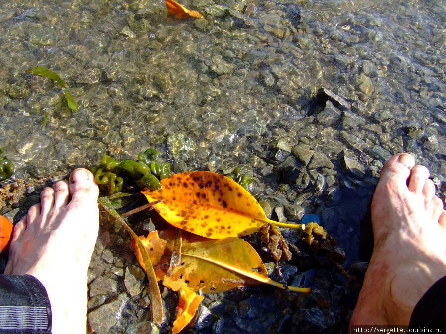 Помыть ноги чтоли в Тихом океане