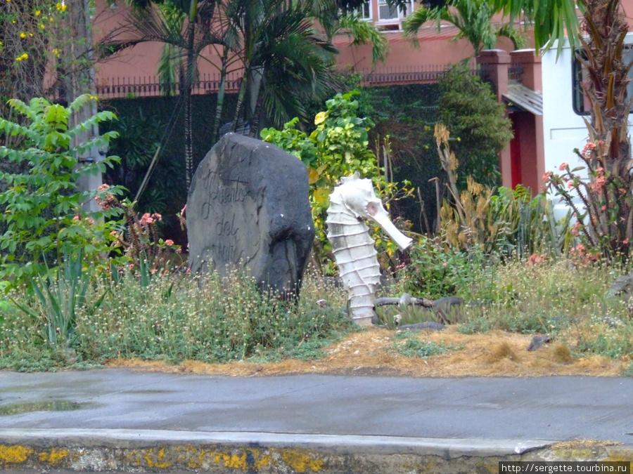 Этот камень и конек горбунек стоят рядом с Пуэрто дель Мар