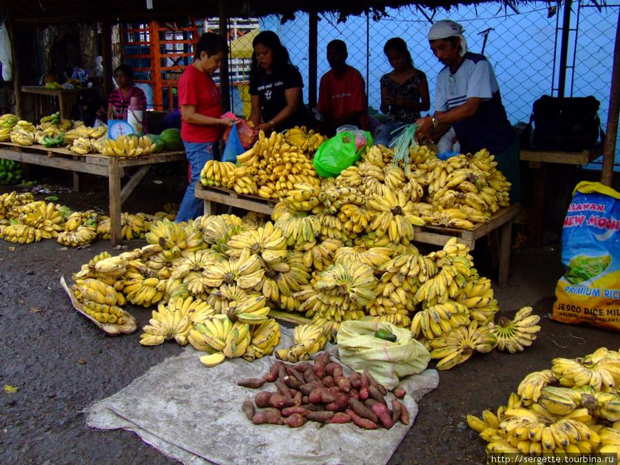 море моих любимых бананов