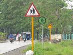 Дорожные знаки разных цветов