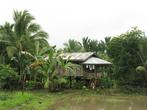 Сельские жилища