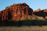 Долина Джеты-Огуз. Кони на выпасе.