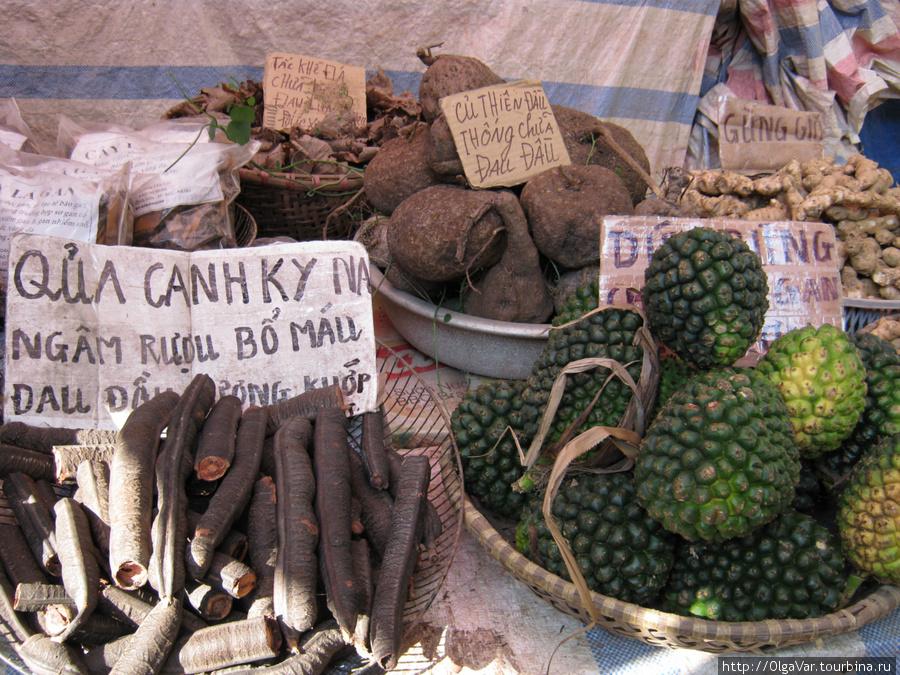Неизвстные съедобные плоды, очень напоминающие боевые гранаты