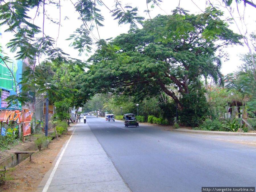 Ризаль авеню в районе аэропорта,  над дорогой тоже большое раскидистое дерево