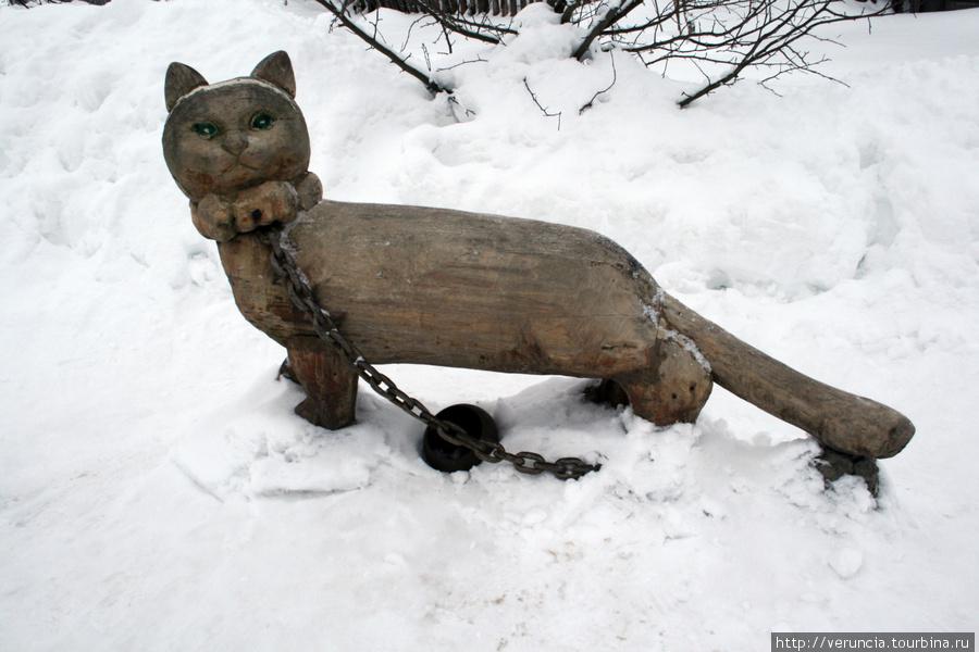Кот-ученый.