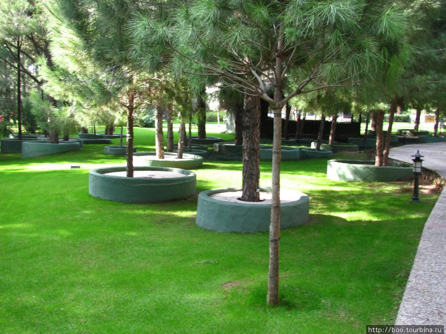 территория находится практически в лесу. при постройке отеля были сохранены практически все заповедные деревья
