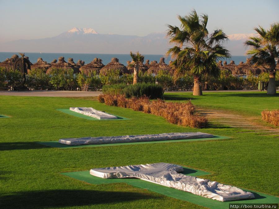 поле для мини-гольфа.