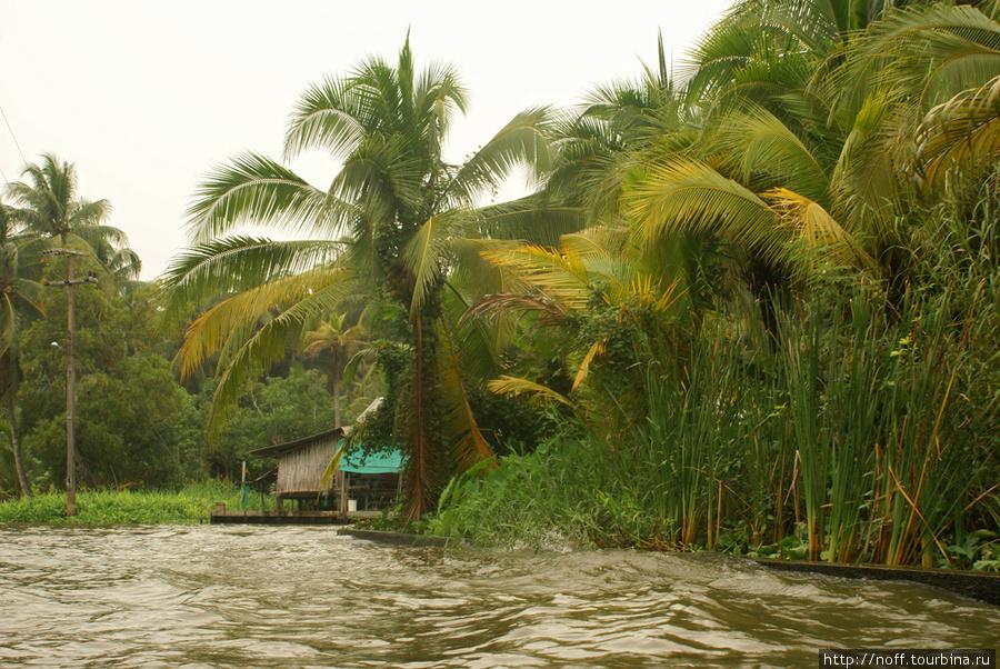 Каналов много, на них домики разного калибра, от лачуг, до больших и солидных.