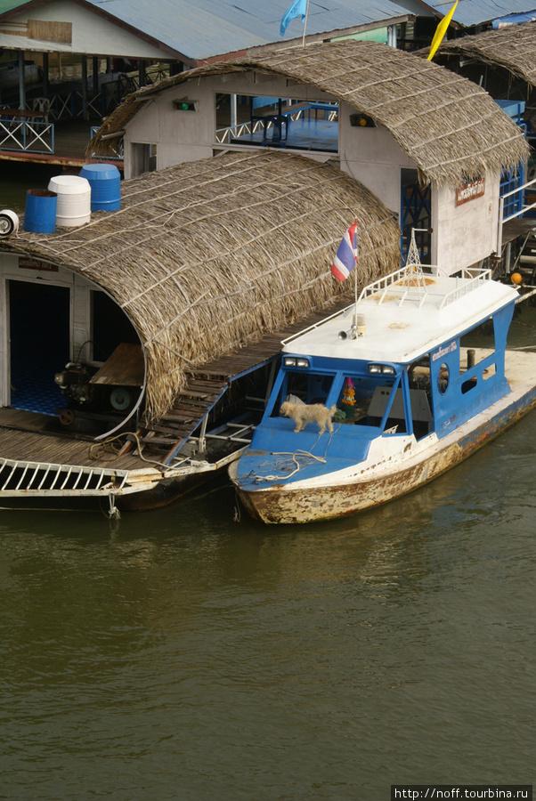 В этом месте Квай вполне судоходная. Буксиры управляемые собаками таскают плавучие рестораны: