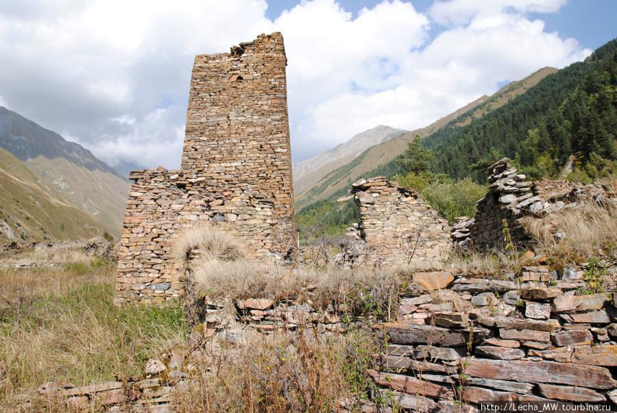 Башни Дзукаевых  в селении Челиат
