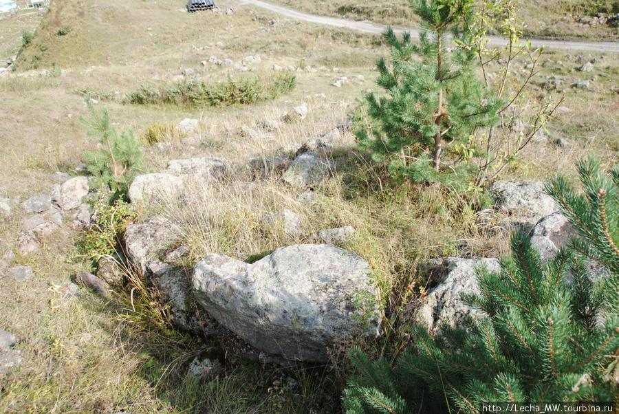 Остатки царциатского городища