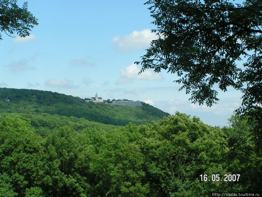 Вид на гору Каленберг
