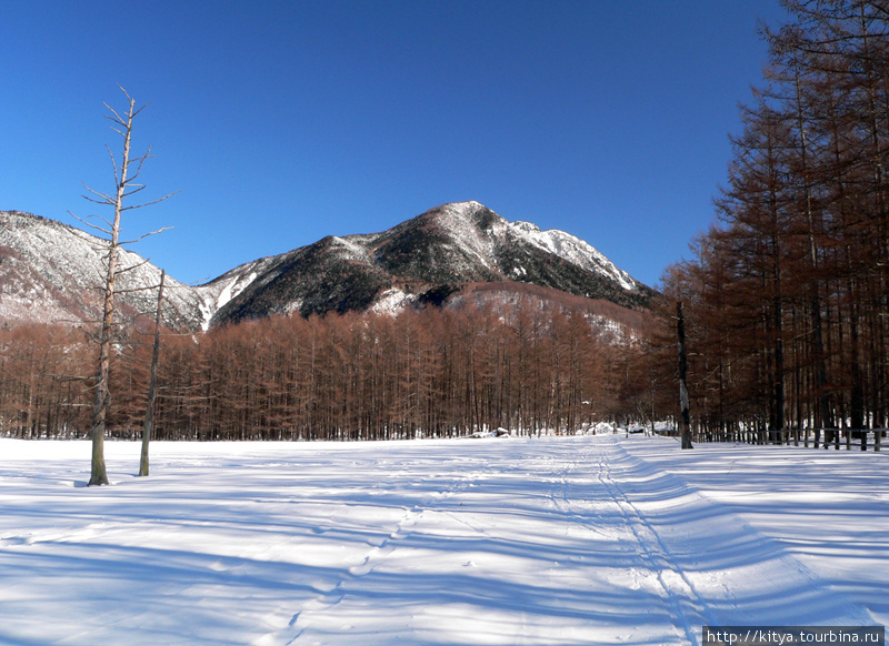 На лыжне недалеко от отеля
