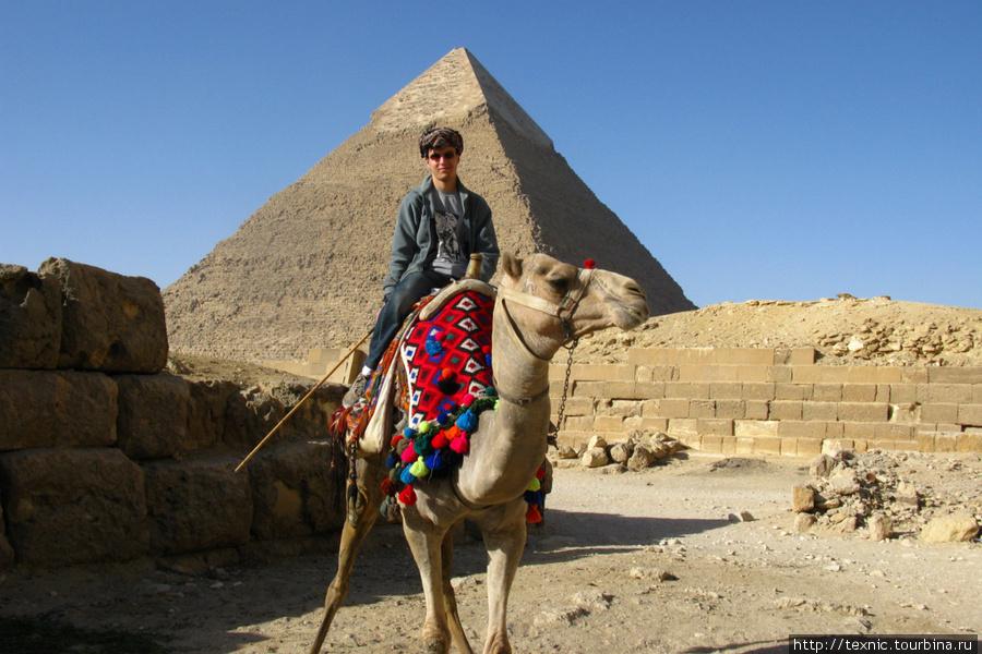 Как я не отпирался, меня затащили на верх верблюда