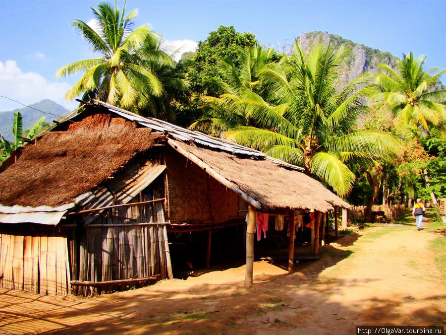 Проход по деревне среди густых банановых зарослей
