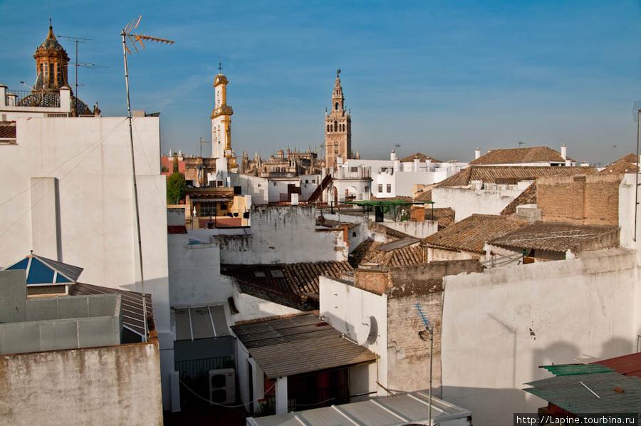 Вид с крыши Амадеуса (вдали видна крыша кафедрального собора и Хиральда).