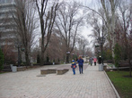 Начало бульвара Пушкина. Летом здесь красиво.